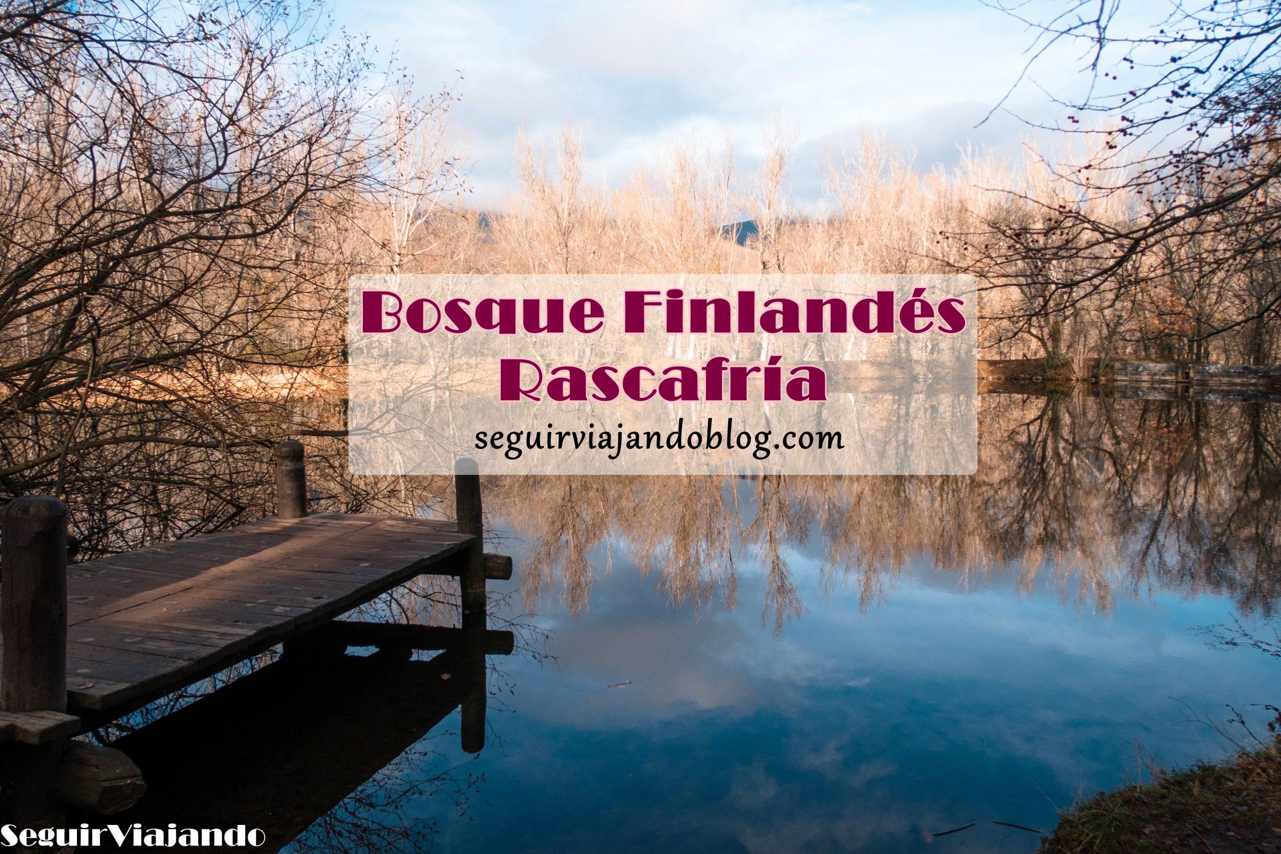 Bosque Finlandés Rascafría - Seguir Viajando